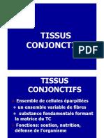 Tissus Conjonctifs I