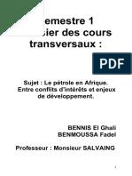 Dossier sur le pétrole en Afrique