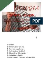 GRAFOLOGIA Cuarta Sesión [Solo Lectura]