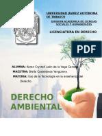 DERECHO AMBIENTAL pryecto bueno.docx