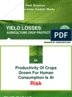 Crop losses.pdf