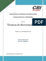 Seminario Tecnicas de Biorremediacion