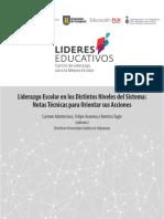 Liderazgo Escolar en Los Distintos Niveles Del Sistema LIDERES EDUCATIVOS (1)