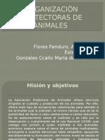 Organización Protectoras de Animales