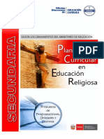Planificacion Curricular Re.