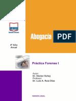 Derecho - Practica Forense  - UCASAL