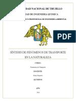 Fenémenos de Transporte en El Medio Ambiente - Trabajo Final[1]