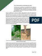 Resistencia Del Suelo - Vegetacion