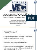 PPT-ACCIDENTESPONZONOSOS.pdf
