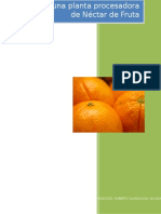 242086148-Diseno-de-una-planta-procesadora-de-Nectar-de-Fruta-docx.docx