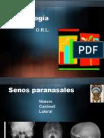 RADIOLOGIA y Anatomia Nariz Presentacion Alumnos