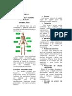 Unidad II Del Manual de Enfermeria