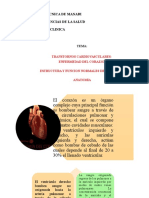 TRANSTORNOS-CARDIOVASCULARES (1)