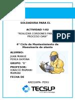 Informe de Soldaudra OAW