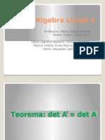 Algebra Lineal 1 Final