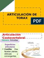Articulación de Torax
