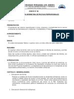 Estructura de Informe-practicas II
