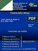 RENAL II 2010