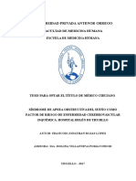 Informe Final de Tesis Ecvi Saos 2017
