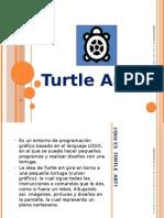 Turtle Art Nuevo Portfolio