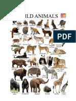 Animals Pic - Uqayl