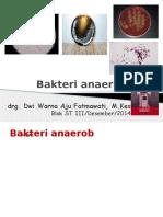 bakteri anaerob