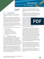 PDF Wbtni Basis of Strategy 09-01-09 03
