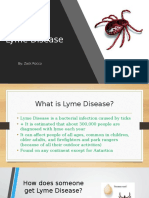 health lyme disease project