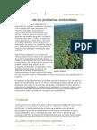 Las Escalas de Los Problemas Ambient Ales 2C