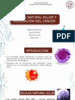 celulas natural killer