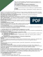 DER AMBIENTAL resumen.docx