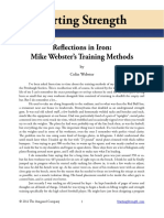 Reflection of iron .pdf
