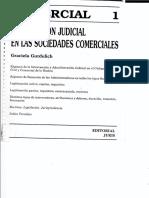 Intervención Judicial en Sociedades Comerciales - Gurdulich Graciela