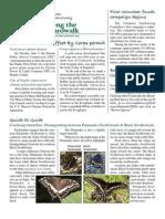 July 2007 Along the Boardwalk Newsletter Corkscrew Swamp Sanctuary