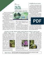 June 2008 Along the Boardwalk Newsletter Corkscrew Swamp Sanctuary