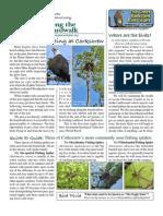 February 2009 Along the Boardwalk Newsletter Corkscrew Swamp Sanctuary