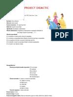 Proiect Limba Rom II Recapiyulare
