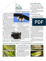 March 2009 Along the Boardwalk Newsletter Corkscrew Swamp Sanctuary