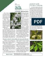April 2009 Along the Boardwalk Newsletter Corkscrew Swamp Sanctuary