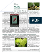 June 2010 Along the Boardwalk Newsletter Corkscrew Swamp Sanctuary