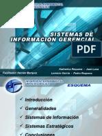 Sistema de Informacion Gerencial 18117