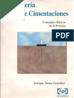 Enrique Tamez - Ingeniería de Cimentaciones