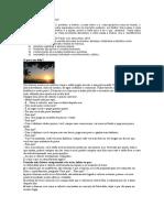 FILOSOFIA DE QUINTA 3º ANO.doc