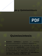 Fotosíntesis y Quimiosíntesis