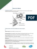 Diccionario American Cancer Society v.03[1]