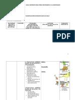 Formato Planificacion DUA 2
