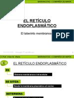El Reticulo Endoplasmatico Mcm
