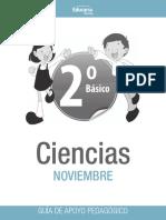 Ciencia_2b Noviembre Guia