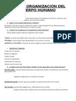 Tema 1 Organización Del Cuerpo Humano ( Biologia)