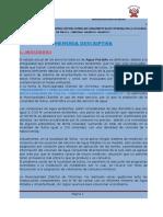 II. Memoria descritiva del proyecto TULLCA.docx